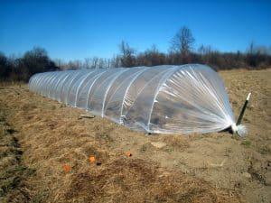 نایلون عریض شفاف کشاورزی