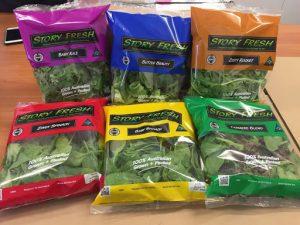 بسته بندی سبزیجات تازه